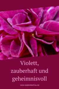 Violett, die Farbe der Frauen