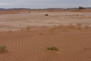 Wüste Lac Iriki