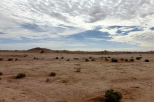 Wüste große Ebene