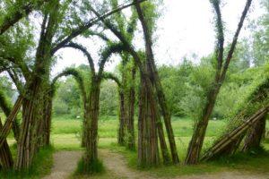 30 m Durchmesser hat der Weidenpalais
