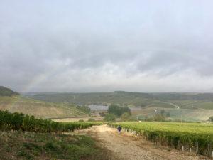 Pilgern unterm Regenbogen