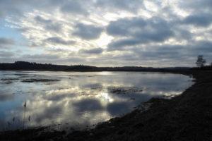 Magisch: der Selliner See